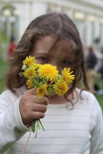 Weeds You Can Eat: Dandelion Bruschetta