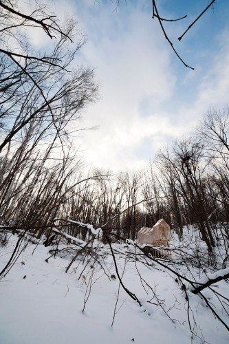 Leave No Trace: A Gathering Place in the Winter Woods