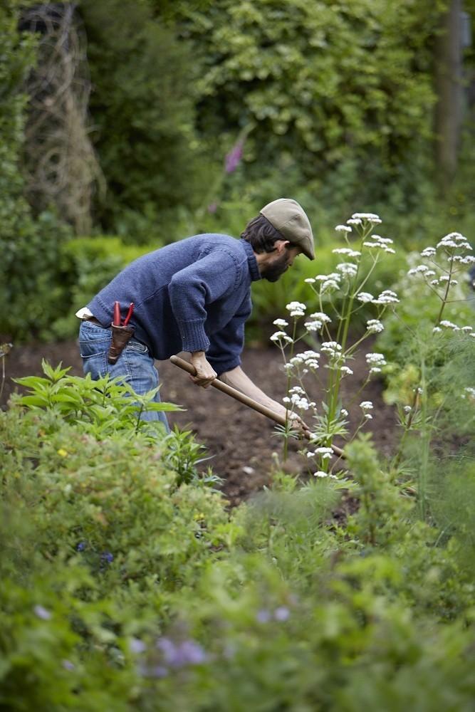 Garden Lush - cover