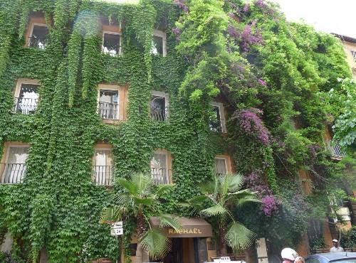 The Original Vertical Garden: Hotel Raphael in Rome