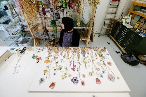 Studio Visit: Botanical Artist Anne ten Donkelaar