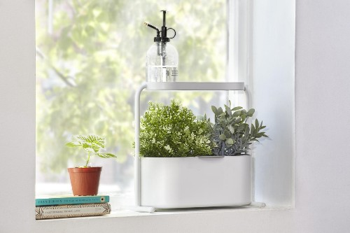 10 Easy Pieces: High Tech Herb Growing Kits