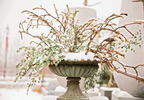 Winter Landscaping: 7 Holiday Décor Secrets to Steal from Terrain