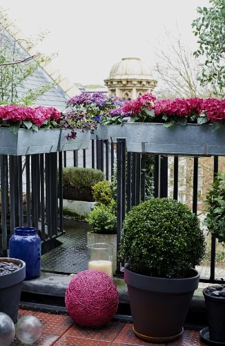 Ask the Expert: 10 Tips to Transform a Tiny Balcony into an Instant Garden with Isabelle Palmer