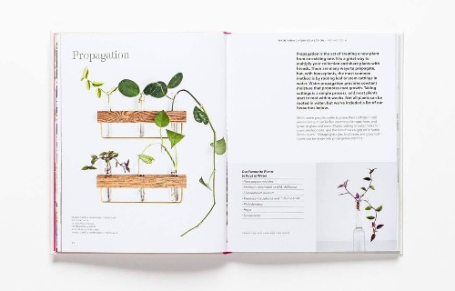 Holiday Gift Guide: 7 Beautiful Books Every Houseplant Lover Needs