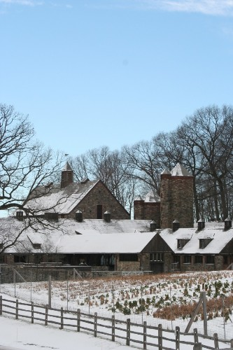 Ask the Expert: Winter Garden Tips from Stone Barns Center