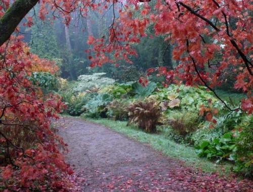 A Gothic Garden Visit, Courtesy of the Mitfords - Gardenista