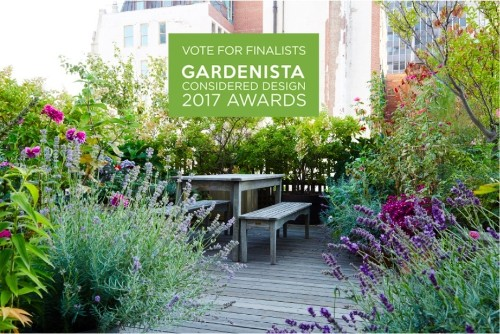 Vote for the Best Amateur Garden in Our Design Awards