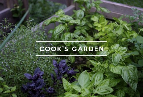 Table of Contents: Cook's Garden