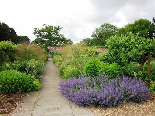 Landscaping Ideas: 11 Lavender Gardens Around the World