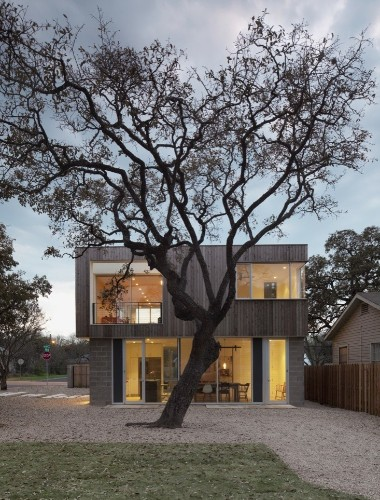 Architects' Roundup: 10 Landscapes Designed Around a Single Tree