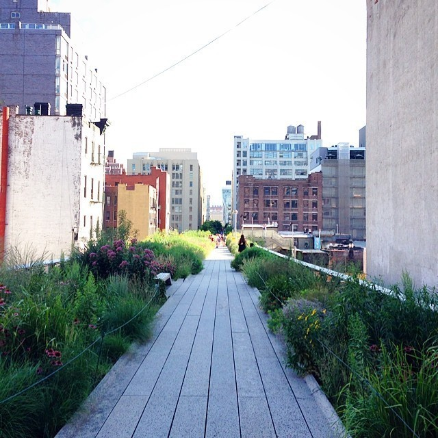 #GardenistaTravels: Global Greenery From Gardenista Readers
