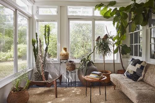 11 Ingenious Ways Houseplants Can Make a Room Look Bigger - Gardenista