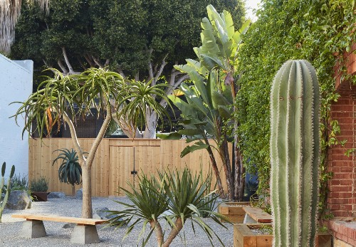 Landscape Architecture: Zen Garden Meets Desert, for Serenity in Santa Monica