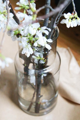 DIY: The Magical Powers of White Cherry Blossoms