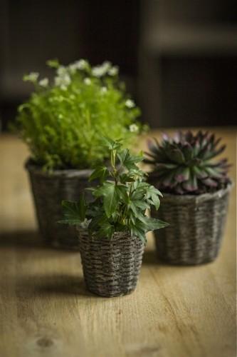 Object of Desire: Basket Weave Concrete Plant Pots