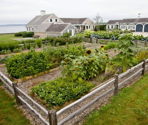Seaside Gardening: 10 Ideas for Serene Coastal Landscapes