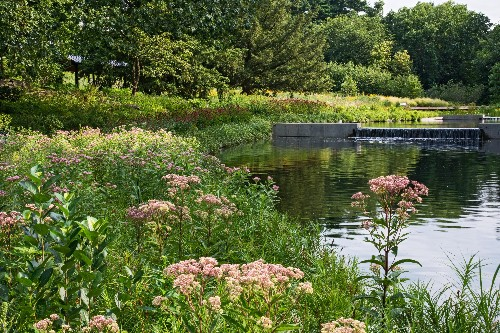 Required Reading: The New York Botanical Garden