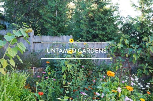 Table of Contents: Untamed Gardens
