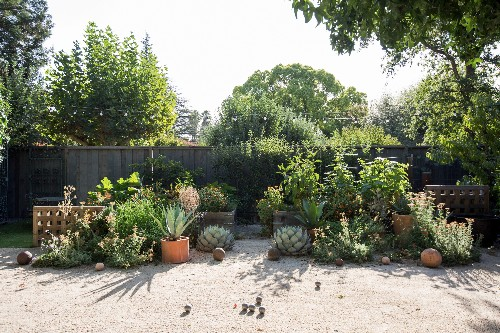 Before & After: An Artful Gravel Garden in Sonoma, California