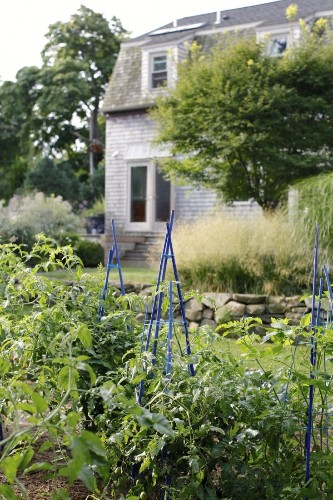 Garden Visit: At Home in Rhode Island with Painter Georgia Marsh