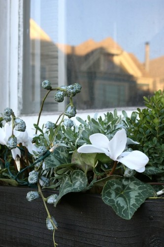 DIY: Holiday Window Boxes, Instant Gratification Edition