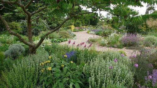 Expert Advice: 11 Tips for Gravel Garden Design