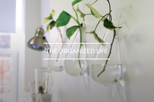 Table of Contents: The Organized Life