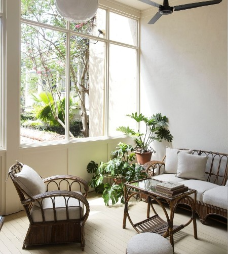 Trending on Remodelista: 5 Design Ideas for Houseplants