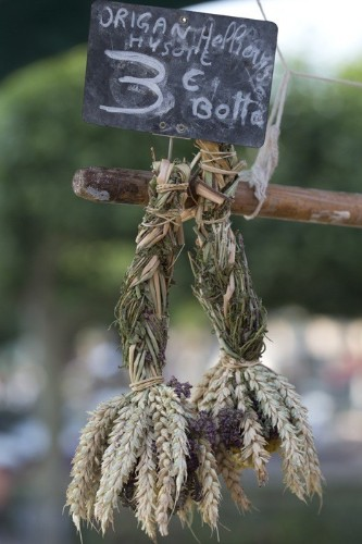 Herb Fever: A French Alchemist at Market