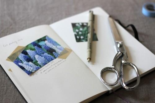 Dear Diary: A Gardener's Journal