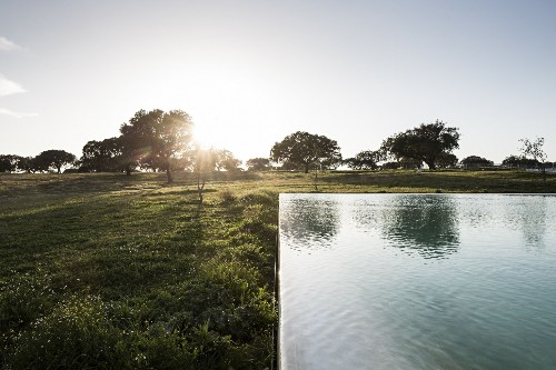 Pool of the Week: A Manmade Beach in the Portuguese Countryside