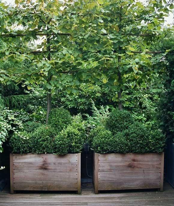 High/Low: Glamorous Belgian Planters