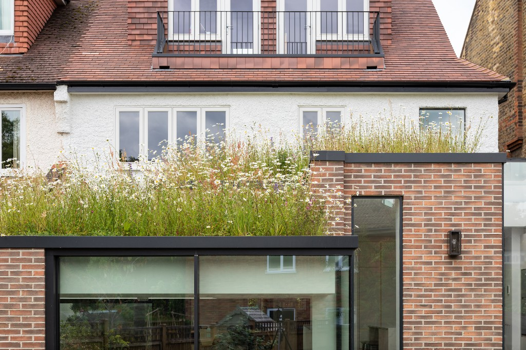 Fresh as a Daisy: A Wildflower Roof on a Home Designed by Fraher & Findlay - Gardenista