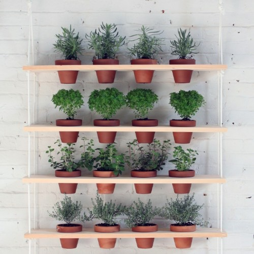 DIY: Hanging Garden Shelves for a Small Space