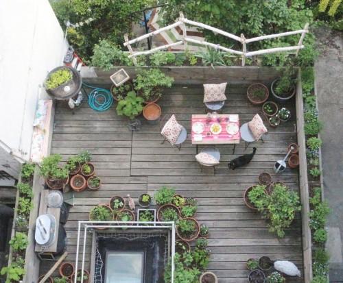Garden Visit: 66 Square Feet (Plus) on a Harlem Terrace