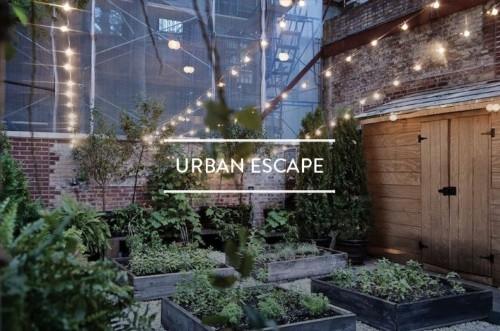 Table of Contents: Urban Escape