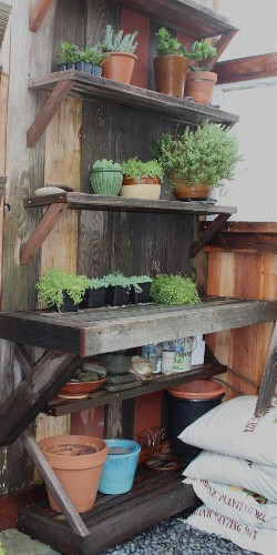 Steal This Look: A Potting Shed Made of Scraps