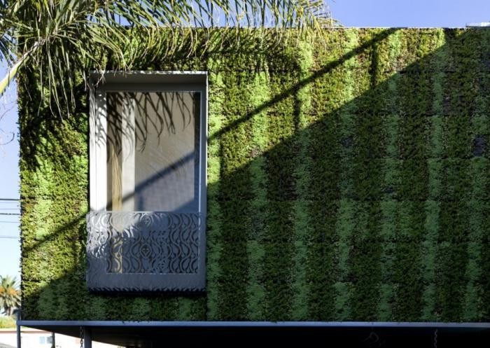 Vertical Gardens: The Greenest House in Venice, California - Gardenista
