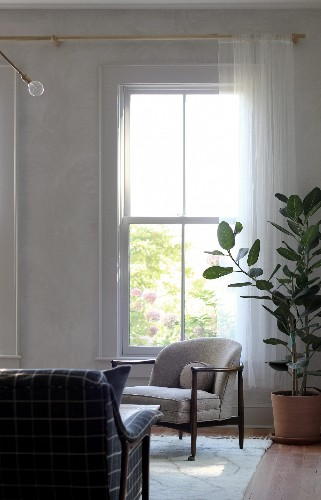 Now Trending: 11 Ingenious Ways Houseplants Can Make a Room Look Bigger
