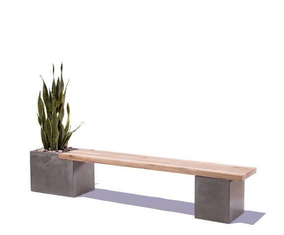 A Concrete Bench With a Side of Greenery