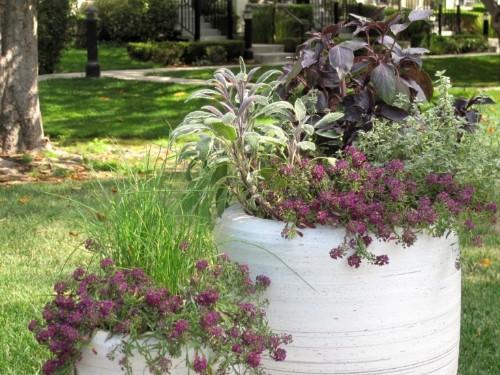 DIY Outdoor Planter: Pretty Enough to Eat