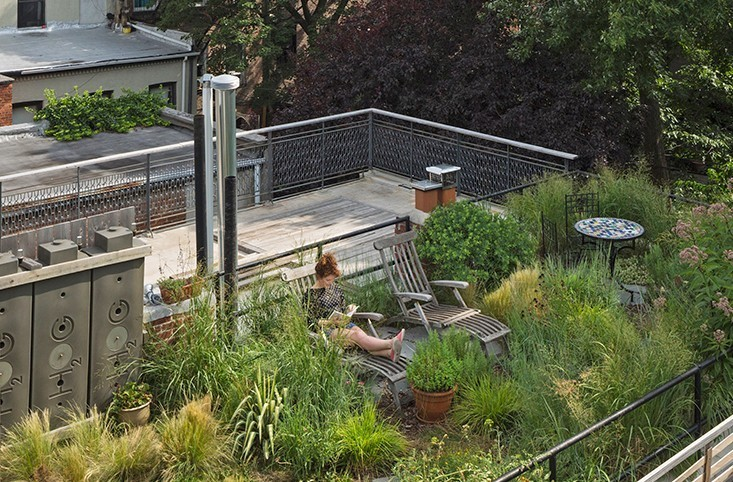 Case Studies: Small Garden Renovations - cover