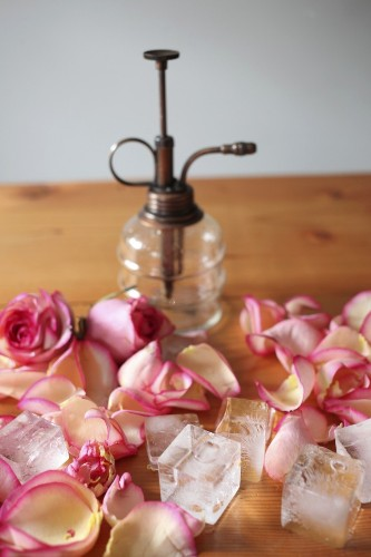 DIY: Rose Water Hydrosol