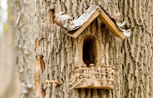 12 Ideas to Steal from Fairy Gardens