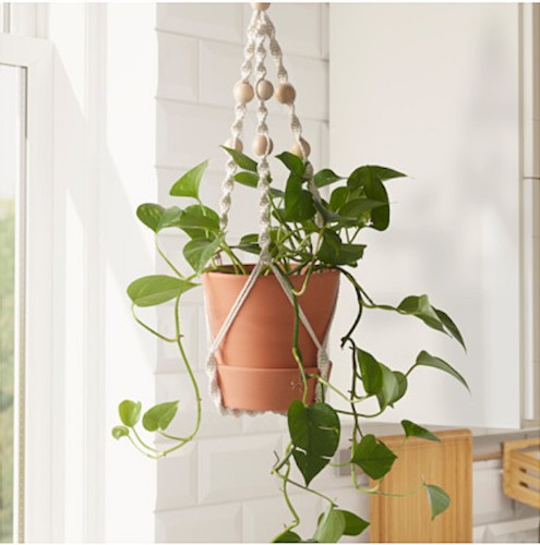 10 Easy Pieces: Macramé Plant Hangers