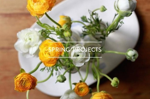 Table of Contents: Spring Projects