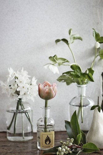 Shopper's Diary: Wild Beauty at Fowlers Flowers in Melbourne