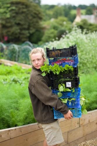Garden Visit: The Kitchen Gardens at The Pig Hotel, Combe