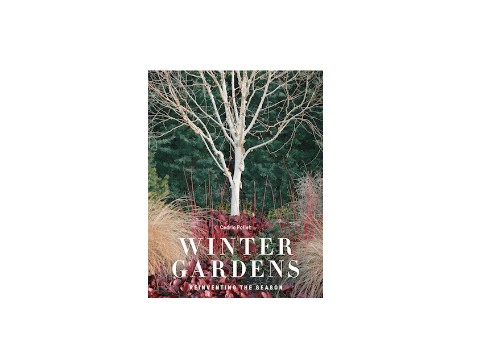 Required Reading: The Dramatic Colors of Winter Gardens